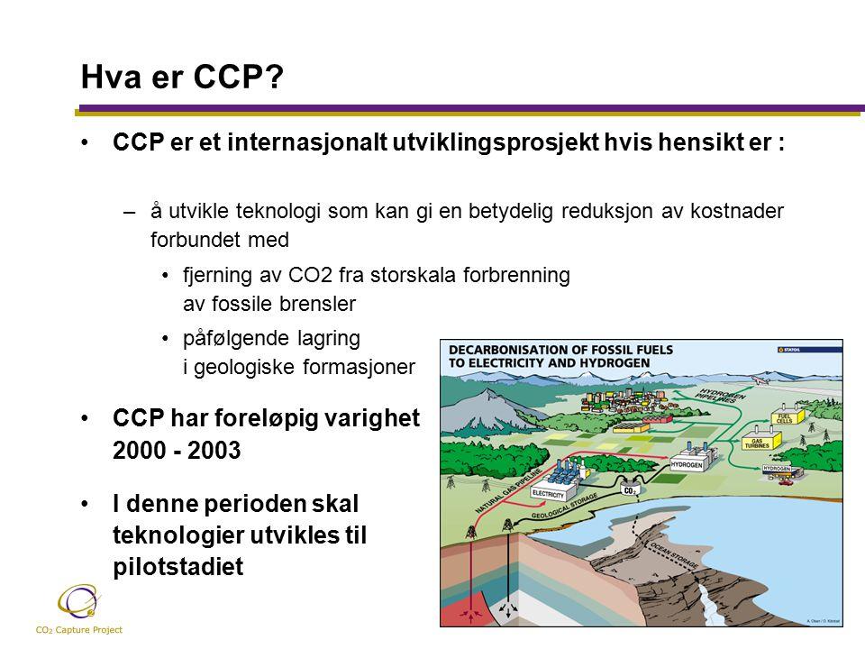 Hva er CCP.