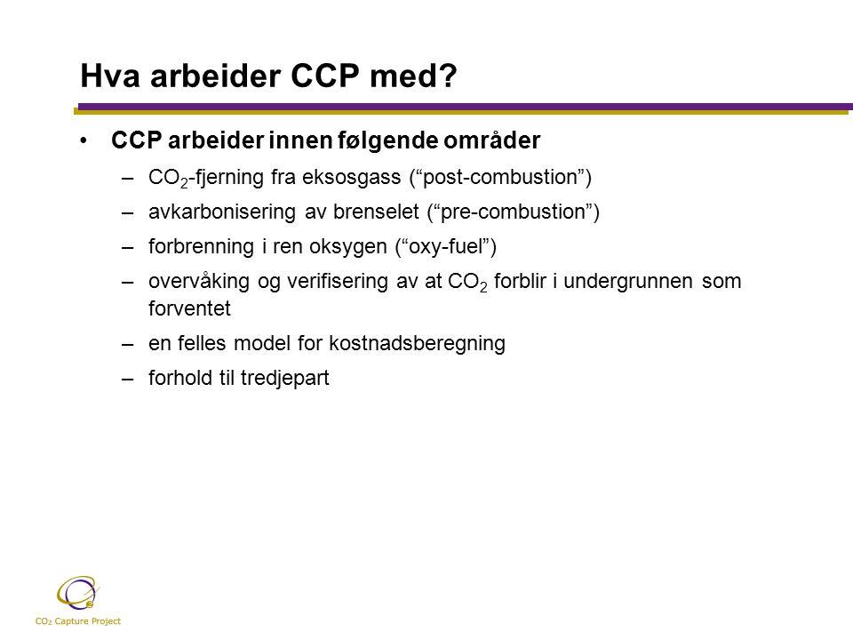 Hva arbeider CCP med.