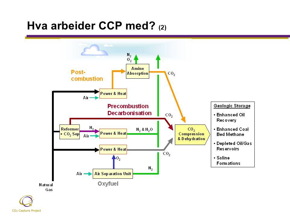 Hva arbeider CCP med (2)
