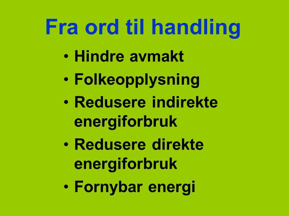 Fra ord til handling Hindre avmakt Folkeopplysning Redusere indirekte energiforbruk Redusere direkte energiforbruk Fornybar energi