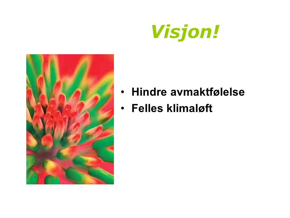 Program, Ørland, 10.juni.