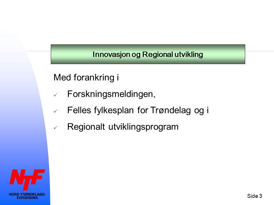 Side 4 Organisering av selskapet - Bemanningsstrategi – kjerne samt fleksibilitet Professor 2