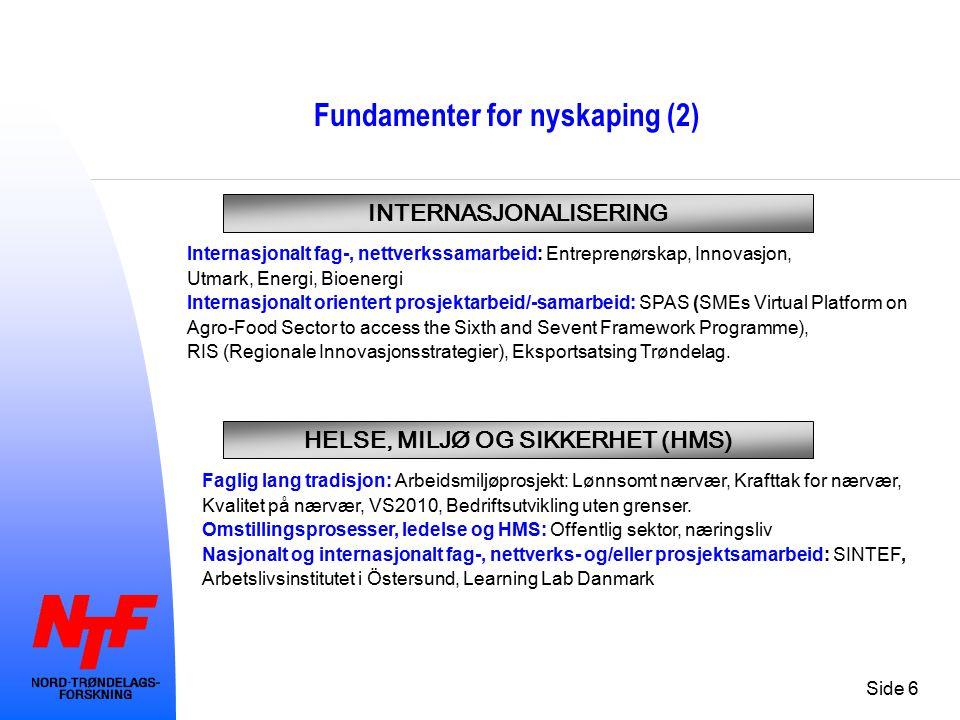 Side 6 Fundamenter for nyskaping (2) INTERNASJONALISERING Internasjonalt fag-, nettverkssamarbeid: Entreprenørskap, Innovasjon, Utmark, Energi, Bioenergi Internasjonalt orientert prosjektarbeid/-samarbeid: SPAS (SMEs Virtual Platform on Agro-Food Sector to access the Sixth and Sevent Framework Programme), RIS (Regionale Innovasjonsstrategier), Eksportsatsing Trøndelag.