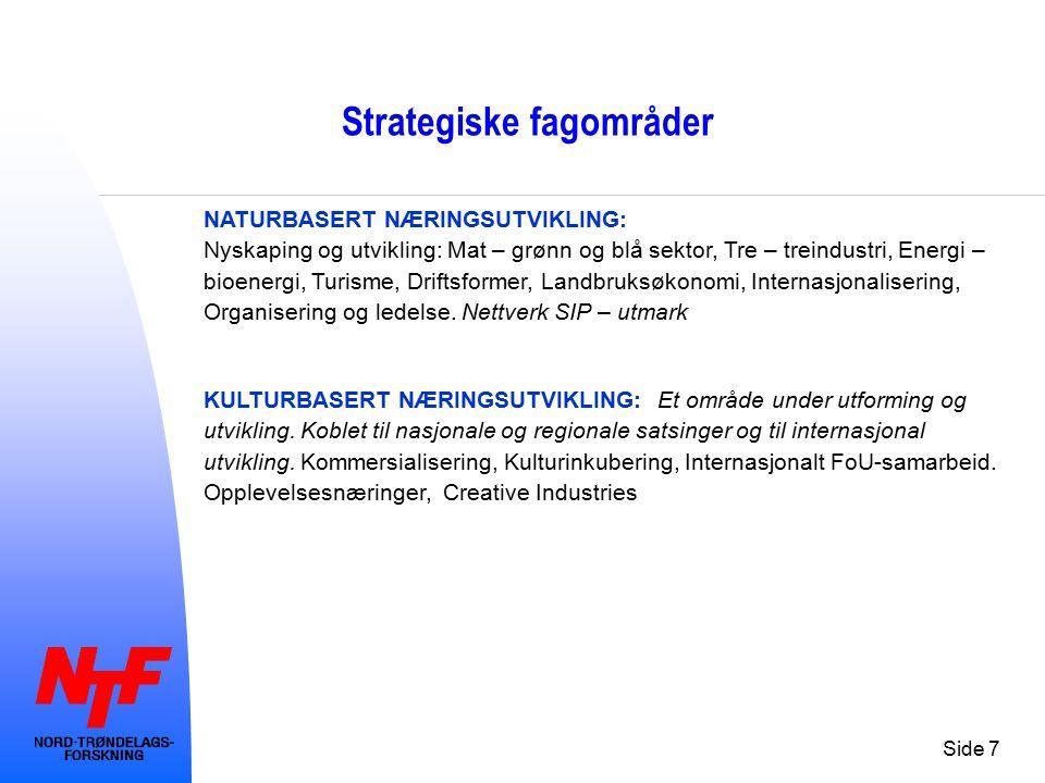 Side 7 Strategiske fagområder NATURBASERT NÆRINGSUTVIKLING: Nyskaping og utvikling: Mat – grønn og blå sektor, Tre – treindustri, Energi – bioenergi,
