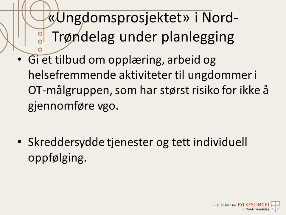 «Ungdomsprosjektet» i Nord- Trøndelag under planlegging Gi et tilbud om opplæring, arbeid og helsefremmende aktiviteter til ungdommer i OT-målgruppen,