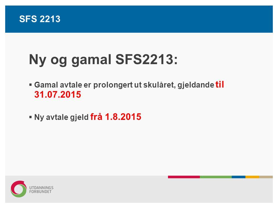 Den nye SFS2213 Oversikt/plan: Oversikt over arbeidstid kvar dag med start-/slutttidspunkt Kan endrast med 2 veke varsel Skal innehalde undervisningstid og planlagde møte Undervisningstid jf.