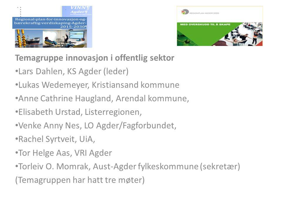 Temagruppe innovasjon i offentlig sektor Lars Dahlen, KS Agder (leder) Lukas Wedemeyer, Kristiansand kommune Anne Cathrine Haugland, Arendal kommune,