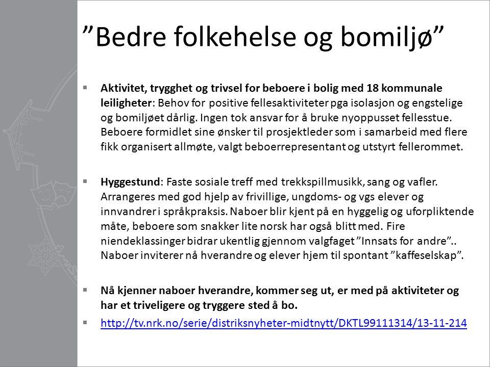 """""""Bedre folkehelse og bomiljø""""  Aktivitet, trygghet og trivsel for beboere i bolig med 18 kommunale leiligheter: Behov for positive fellesaktiviteter"""