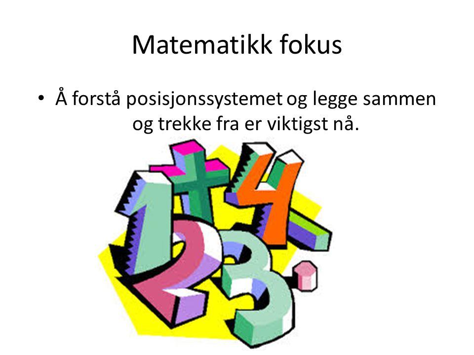 Matematikk fokus Å forstå posisjonssystemet og legge sammen og trekke fra er viktigst nå.