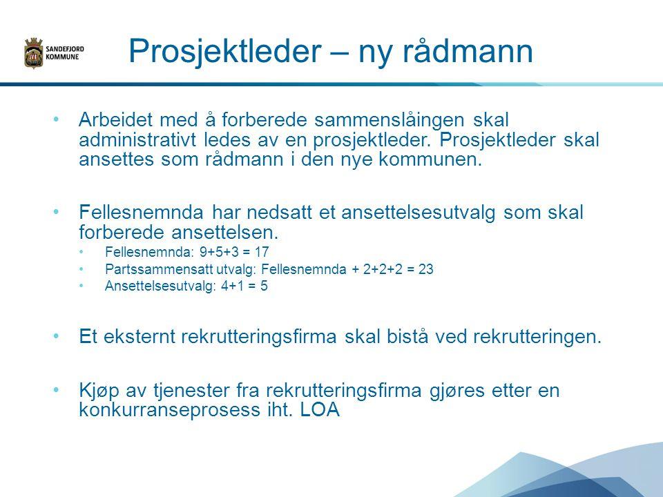Prosjektleder – ny rådmann Arbeidet med å forberede sammenslåingen skal administrativt ledes av en prosjektleder.