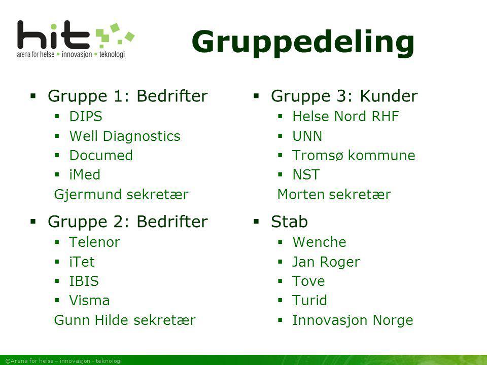 ©Arena for helse – innovasjon - teknologi Gruppedeling  Gruppe 1: Bedrifter  DIPS  Well Diagnostics  Documed  iMed Gjermund sekretær  Gruppe 3: