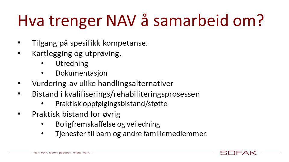 Hva trenger NAV å samarbeid om. Tilgang på spesifikk kompetanse.