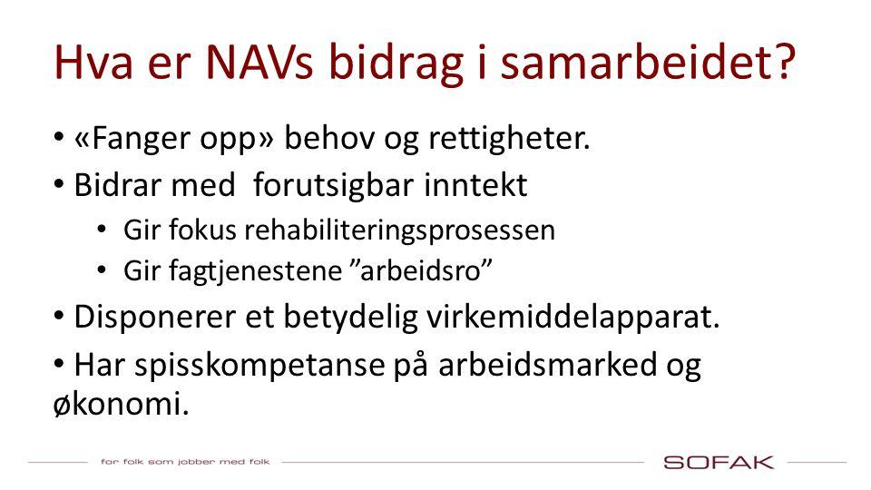 Hva er NAVs bidrag i samarbeidet. «Fanger opp» behov og rettigheter.