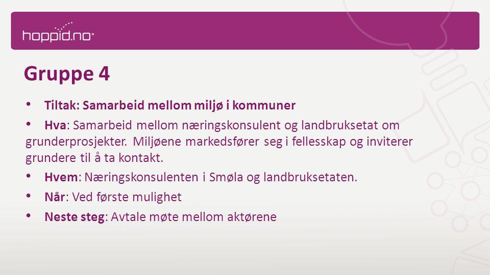 Gruppe 4 Tiltak: Samarbeid mellom miljø i kommuner Hva: Samarbeid mellom næringskonsulent og landbruksetat om grunderprosjekter.