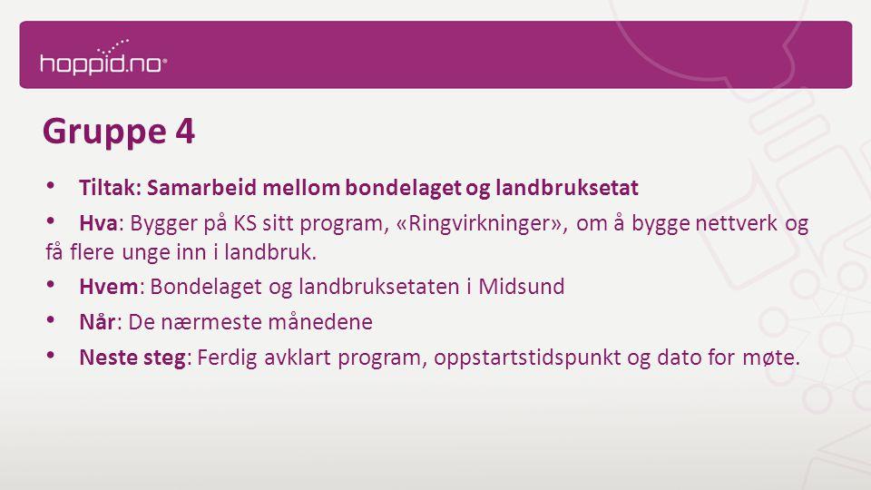 Gruppe 4 Tiltak: Samarbeid mellom bondelaget og landbruksetat Hva: Bygger på KS sitt program, «Ringvirkninger», om å bygge nettverk og få flere unge inn i landbruk.