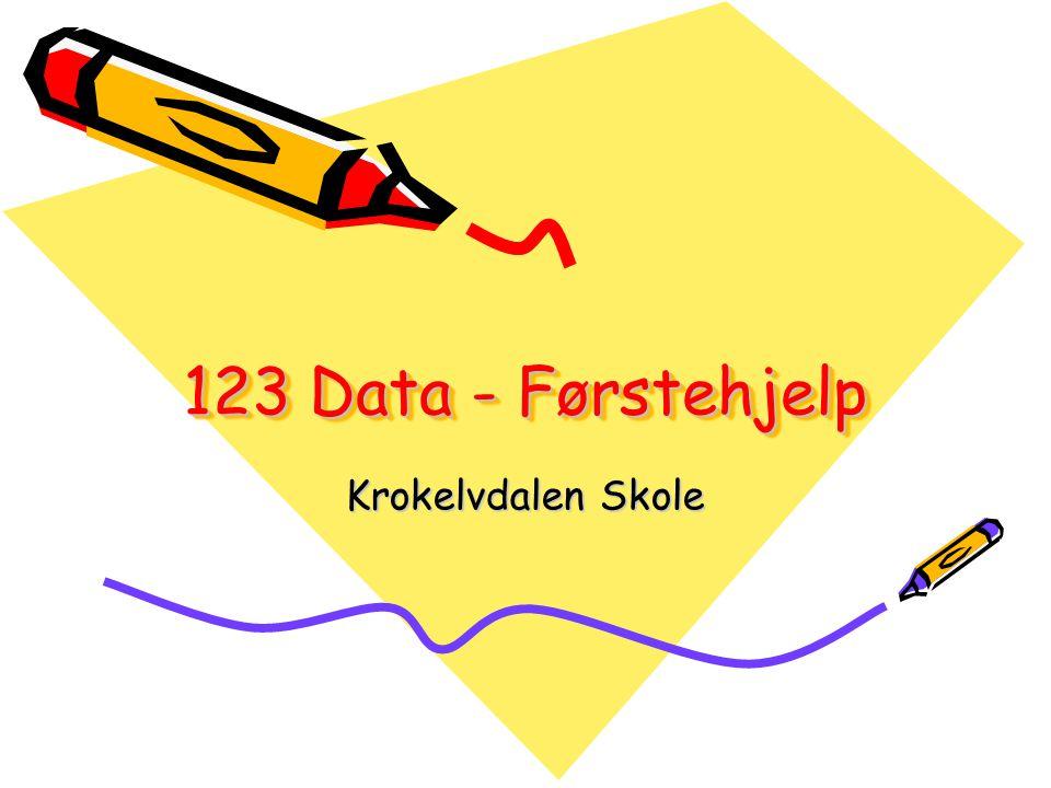 123 Data - Førstehjelp Krokelvdalen Skole