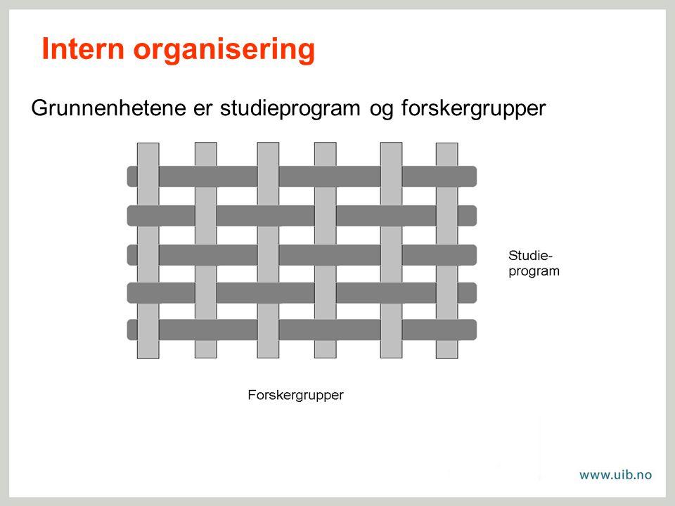 Grunnenhetene er studieprogram og forskergrupper Intern organisering