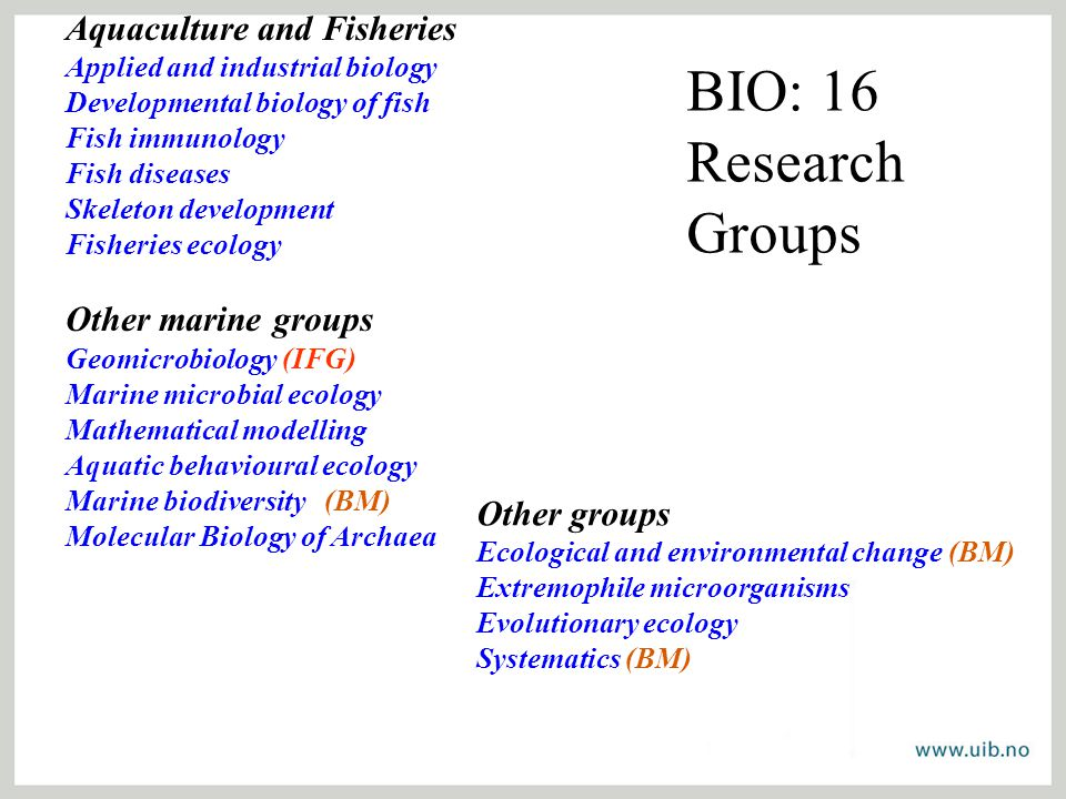 BIO: 16 Research Groups Aquaculture and Fisheries Applied and industrial biology Developmental biology of fish Fish immunology Fish diseases Skeleton development Fisheries ecology Other marine groups Geomicrobiology (IFG) Marine microbial ecology Mathematical modelling Aquatic behavioural ecology Marine biodiversity (BM) Molecular Biology of Archaea Other groups Ecological and environmental change (BM) Extremophile microorganisms Evolutionary ecology Systematics (BM)