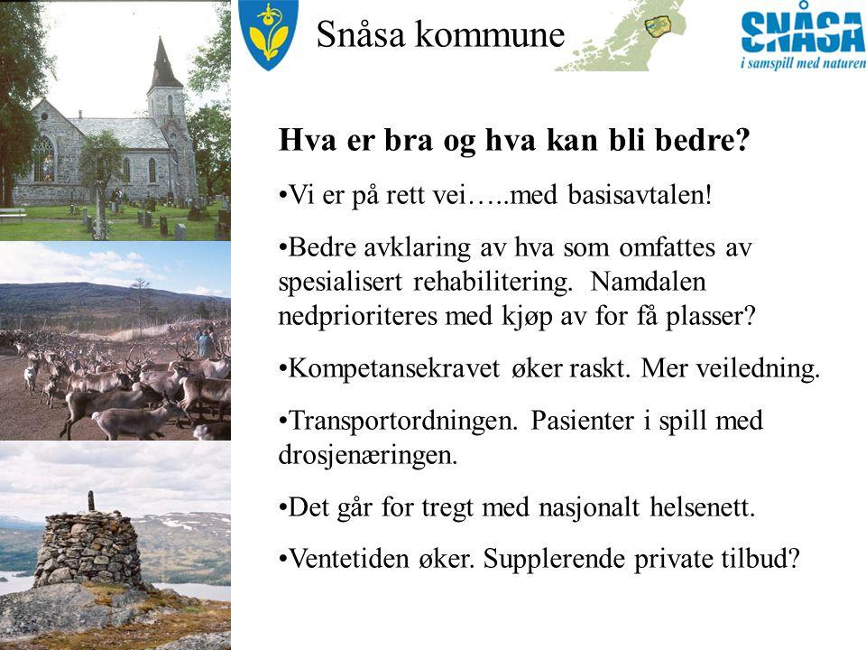 Snåsa kommune Hva er bra og hva kan bli bedre. Vi er på rett vei…..med basisavtalen.