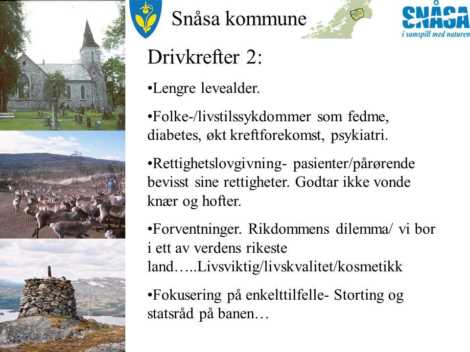 Snåsa kommune Drivkrefter 3: Økonomi i helseforetaka Telemedisin /datakommunikasjon/ helsenett som basis for det sømløse helsetilbudet.