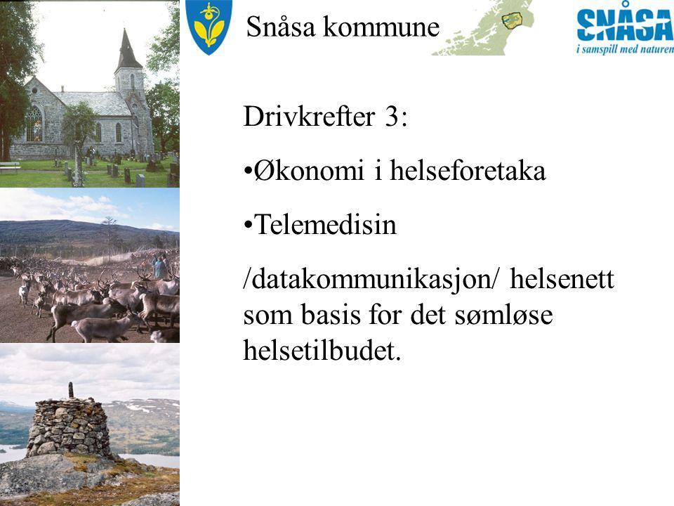 Snåsa kommune Forutsetninger for et god samhandling 1.