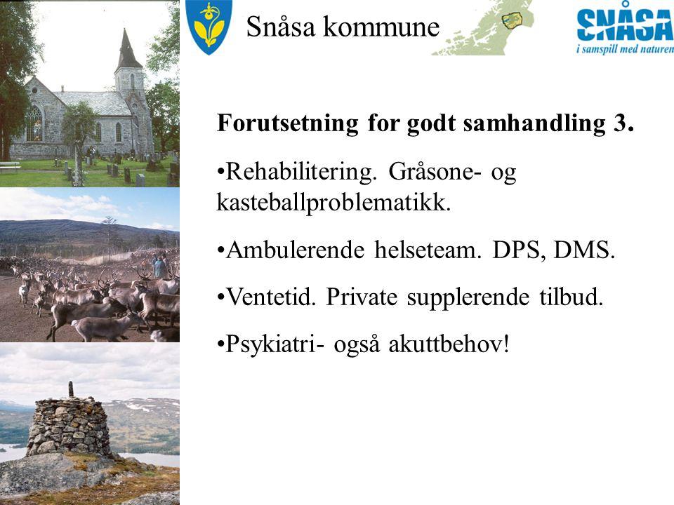 Snåsa kommune Hva er bra og hva kan bli bedre.Vi er på rett vei…..med basisavtalen.