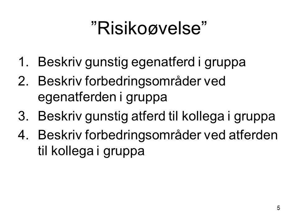 """5 """"Risikoøvelse"""" 1.Beskriv gunstig egenatferd i gruppa 2.Beskriv forbedringsområder ved egenatferden i gruppa 3.Beskriv gunstig atferd til kollega i g"""