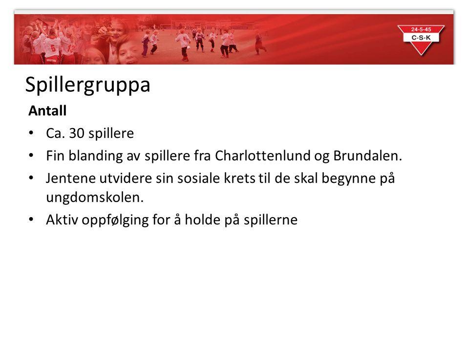 Spillergruppa Antall Ca. 30 spillere Fin blanding av spillere fra Charlottenlund og Brundalen.