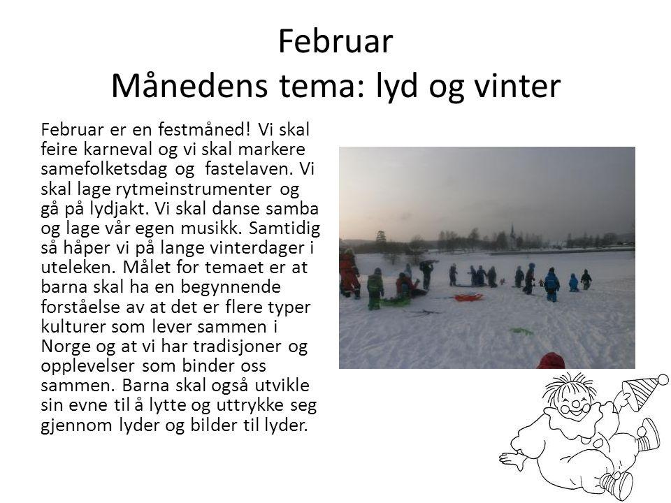 Februar Månedens tema: lyd og vinter Februar er en festmåned! Vi skal feire karneval og vi skal markere samefolketsdag og fastelaven. Vi skal lage ryt