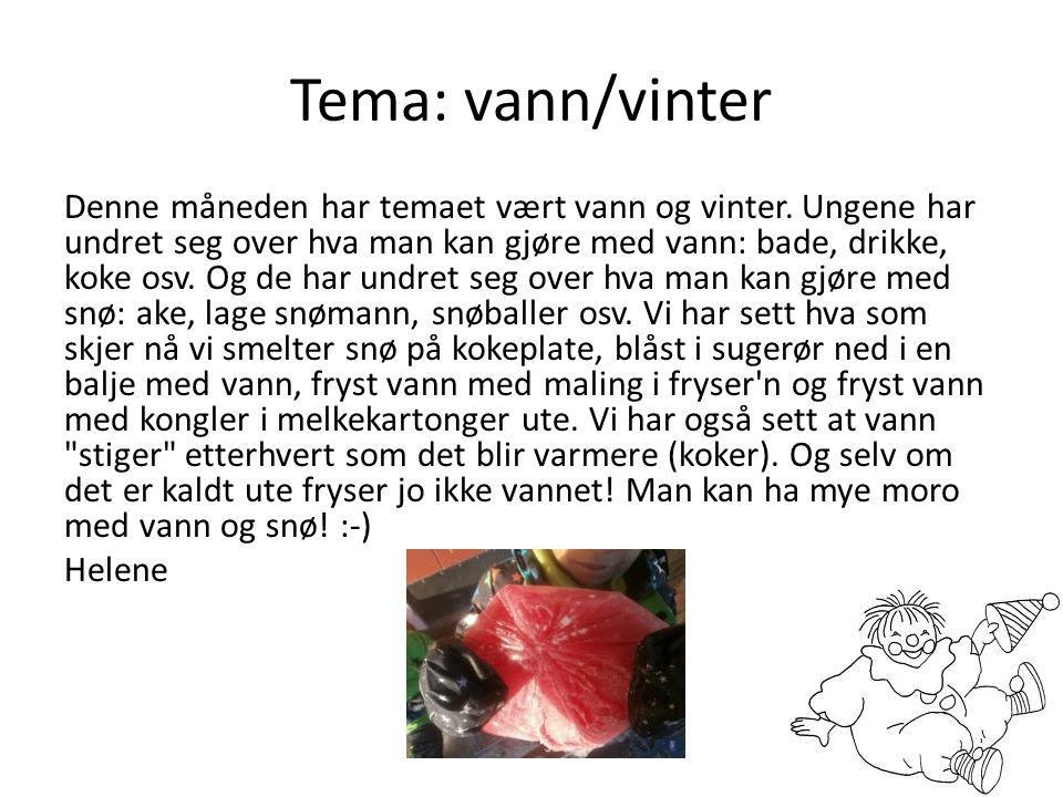 Tema: vann/vinter Denne måneden har temaet vært vann og vinter. Ungene har undret seg over hva man kan gjøre med vann: bade, drikke, koke osv. Og de h