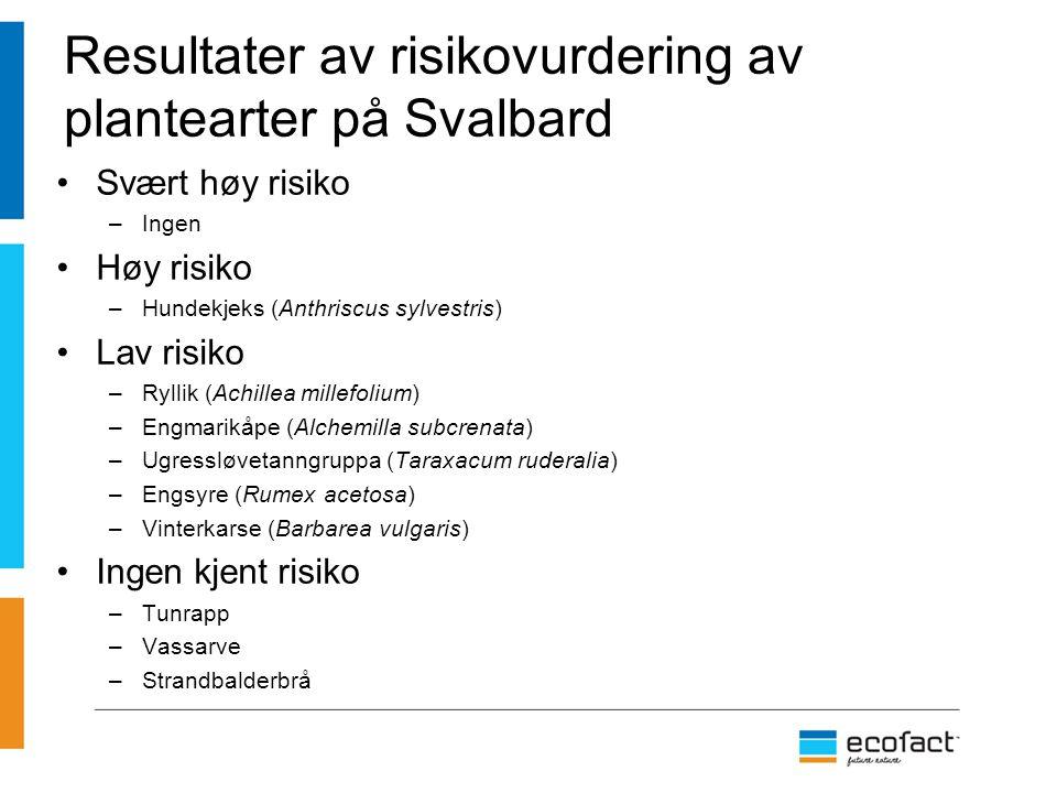 Resultater av risikovurdering av plantearter på Svalbard Svært høy risiko –Ingen Høy risiko –Hundekjeks (Anthriscus sylvestris) Lav risiko –Ryllik (Ac