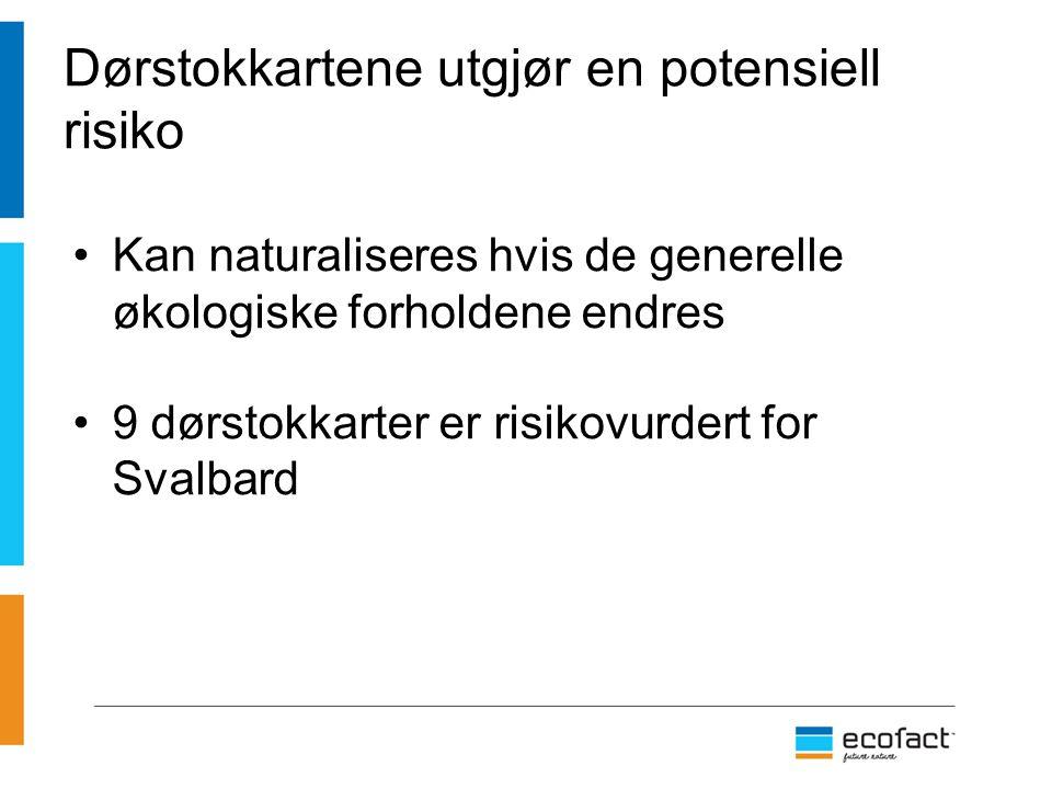 Dørstokkartene utgjør en potensiell risiko Kan naturaliseres hvis de generelle økologiske forholdene endres 9 dørstokkarter er risikovurdert for Svalb