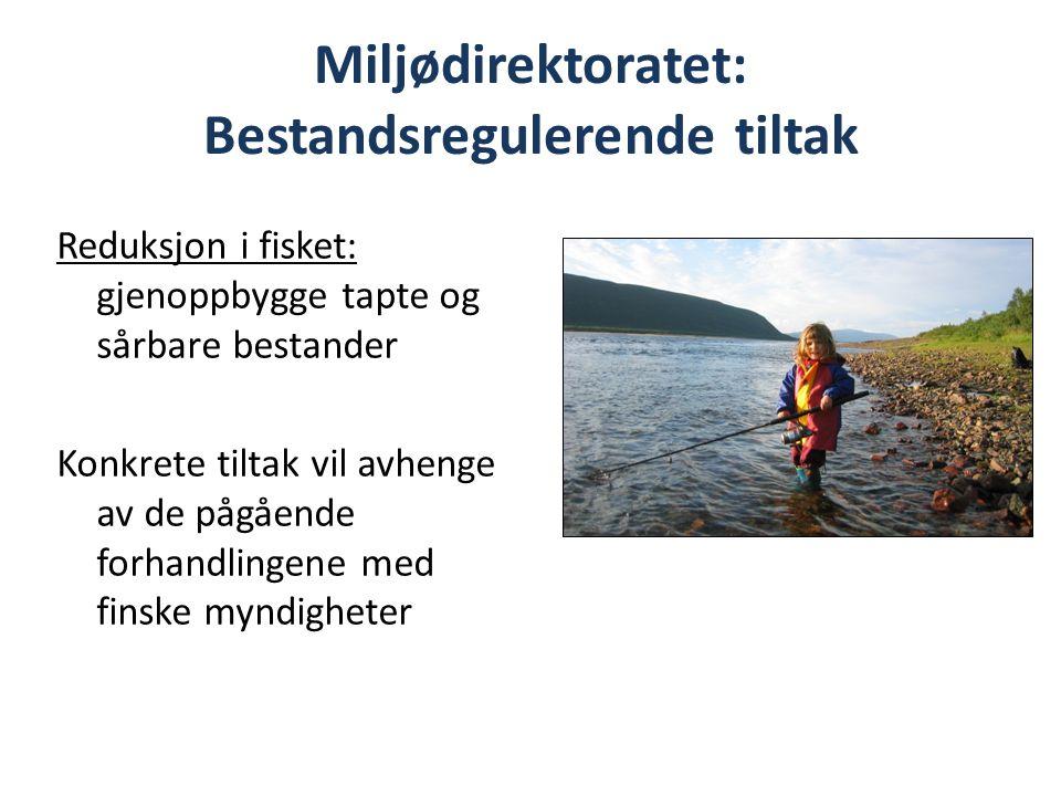 Miljødirektoratet: Bestandsregulerende tiltak Reduksjon i fisket: gjenoppbygge tapte og sårbare bestander Konkrete tiltak vil avhenge av de pågående forhandlingene med finske myndigheter