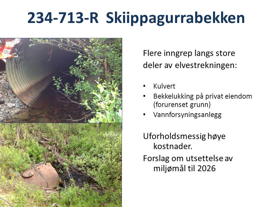 234-713-R Skiippagurrabekken Flere inngrep langs store deler av elvestrekningen: Kulvert Bekkelukking på privat eiendom (forurenset grunn) Vannforsyningsanlegg Uforholdsmessig høye kostnader.