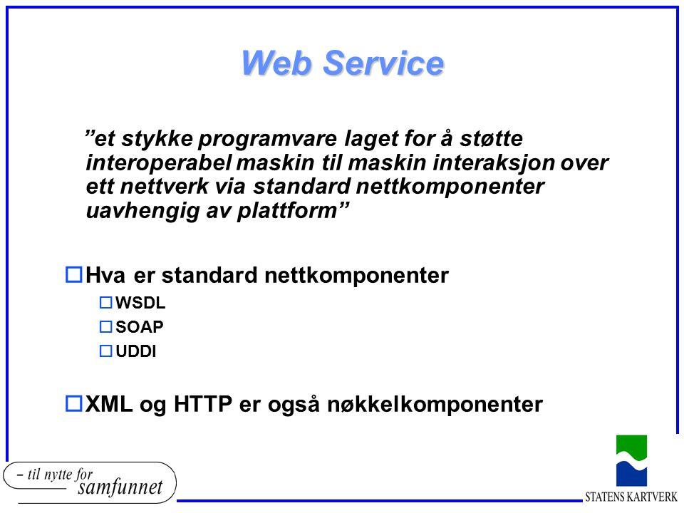 """Web Service """"et stykke programvare laget for å støtte interoperabel maskin til maskin interaksjon over ett nettverk via standard nettkomponenter uavhe"""
