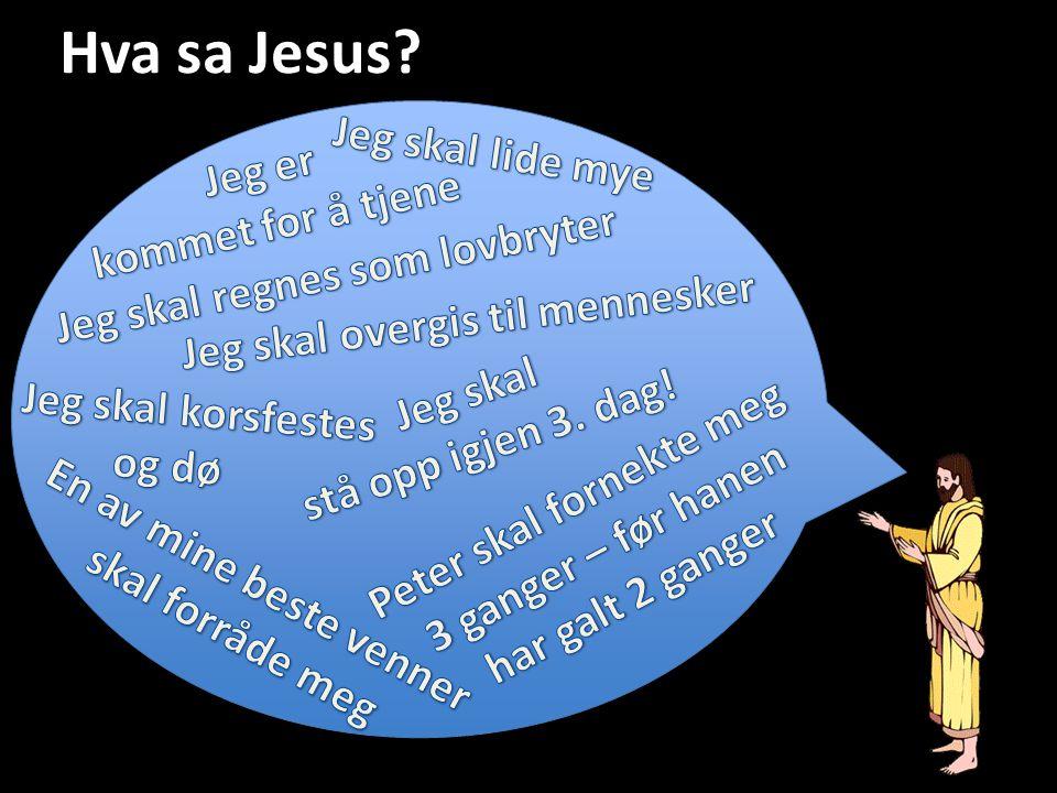 Hva sa Jesus?