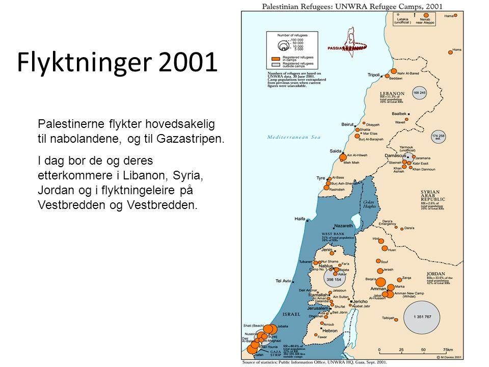 Flyktninger 2001 Palestinerne flykter hovedsakelig til nabolandene, og til Gazastripen. I dag bor de og deres etterkommere i Libanon, Syria, Jordan og