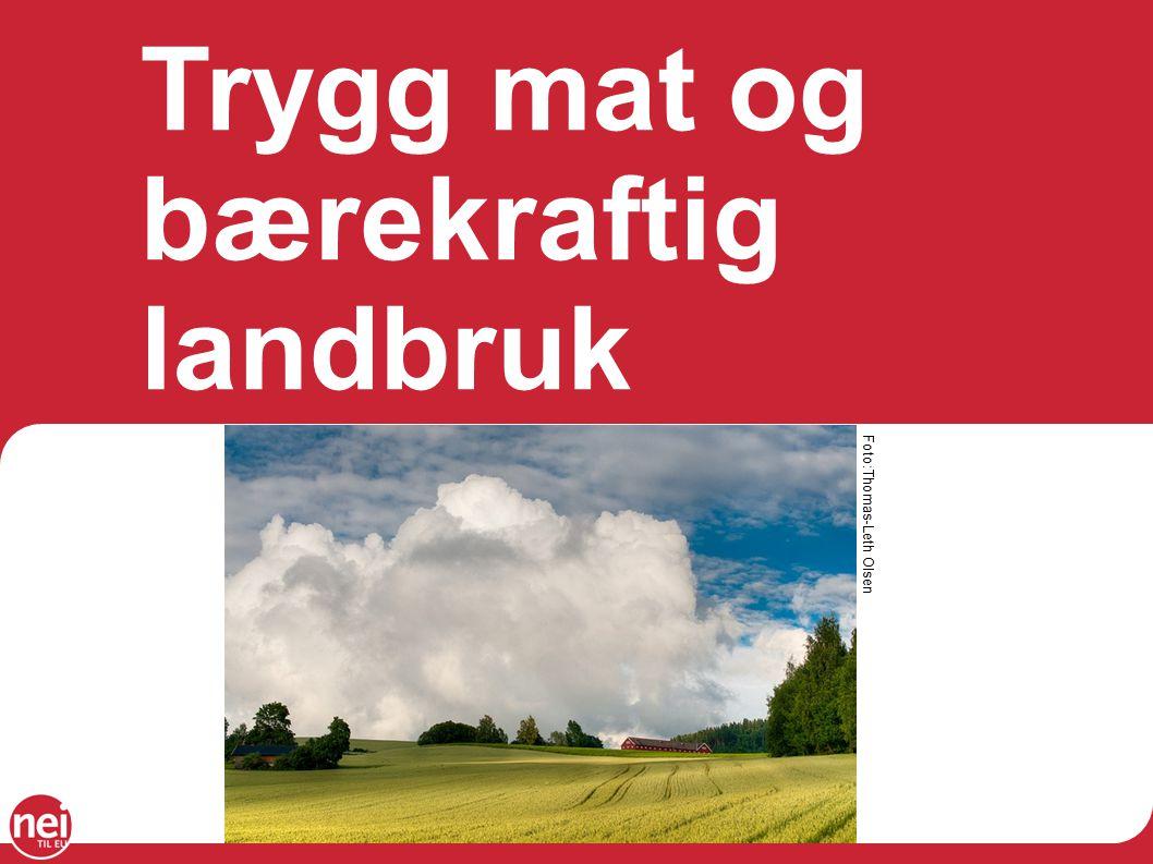 Trygg mat og bærekraftig landbruk Foto:Thomas-Leth Olsen