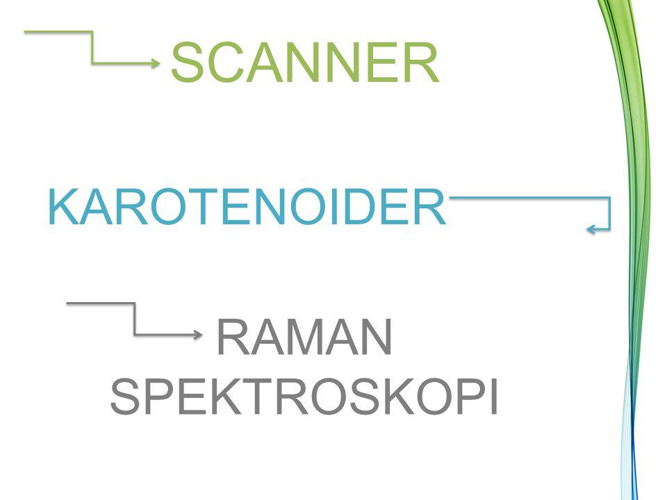 SCANNER KAROTENOIDER RAMAN SPEKTROSKOPI