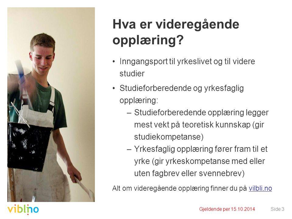 Gjeldende per 15.10.2014Side 3 Hva er videregående opplæring? Inngangsport til yrkeslivet og til videre studier Studieforberedende og yrkesfaglig oppl
