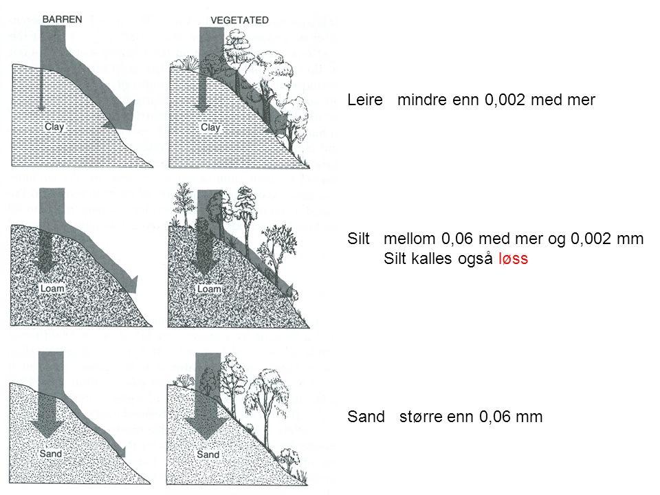 Leire mindre enn 0,002 med mer Silt mellom 0,06 med mer og 0,002 mm Silt kalles også løss Sand større enn 0,06 mm
