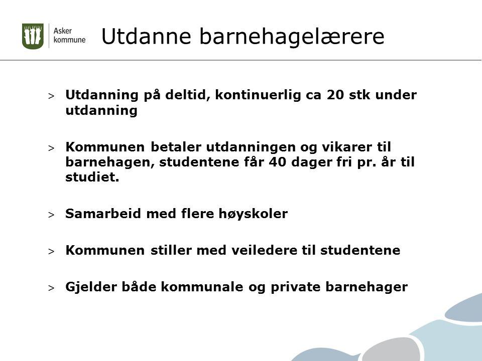 Utdanne barnehagelærere > Utdanning på deltid, kontinuerlig ca 20 stk under utdanning > Kommunen betaler utdanningen og vikarer til barnehagen, studentene får 40 dager fri pr.