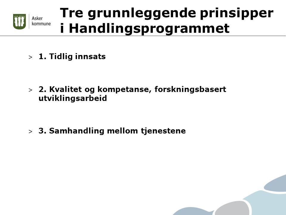 Tre grunnleggende prinsipper i Handlingsprogrammet > 1.
