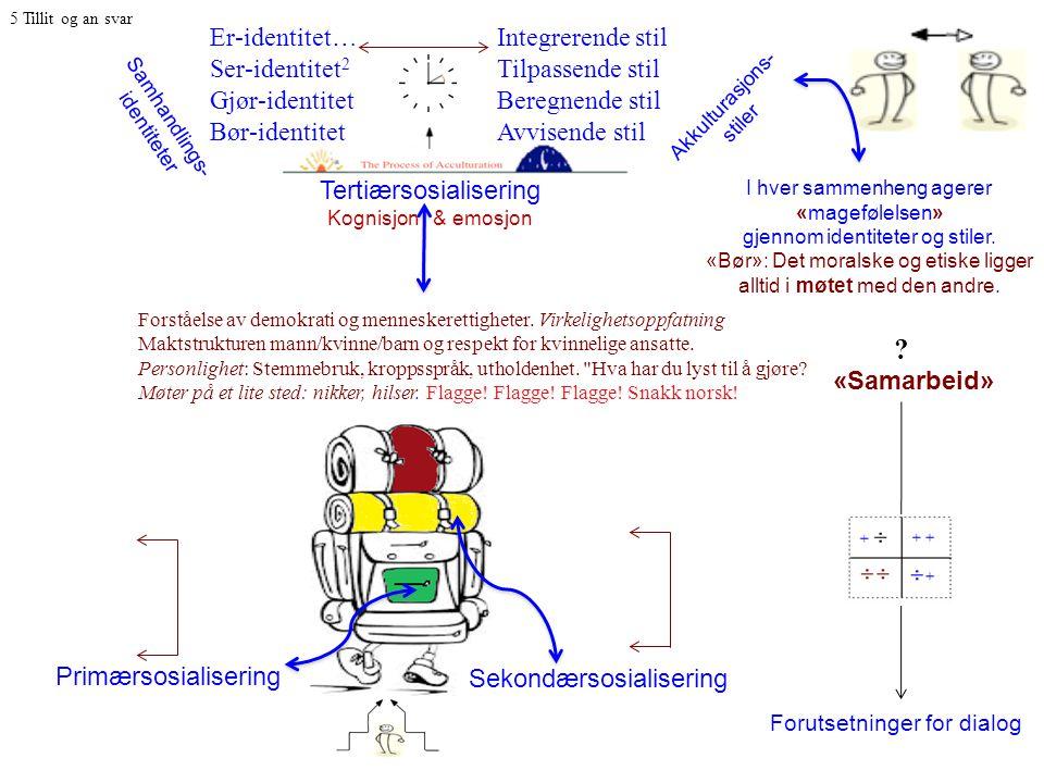 Tertiærsosialisering Kognisjon & emosjon I hver sammenheng agerer «magefølelsen» gjennom identiteter og stiler.