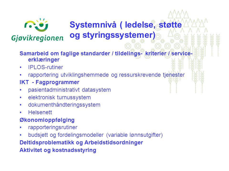 Systemnivå ( ledelse, støtte og styringssystemer) Samarbeid om faglige standarder / tildelings- kriterier / service- erklæringer IPLOS-rutiner rapportering utviklingshemmede og ressurskrevende tjenester IKT - Fagprogrammer pasientadministrativt datasystem elektronisk turnussystem dokumenthåndteringssystem Helsenett Økonomioppfølging rapporteringsrutiner budsjett og fordelingsmodeller (variable lønnsutgifter) Deltidsproblematikk og Arbeidstidsordninger Aktivitet og kostnadsstyring