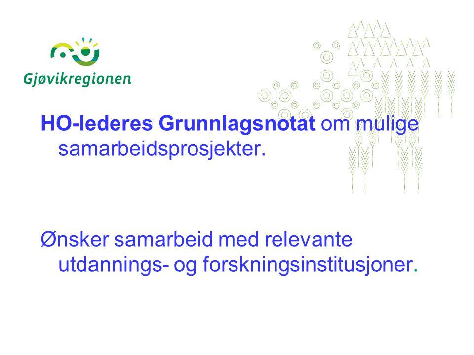 HO-lederes Grunnlagsnotat om mulige samarbeidsprosjekter.