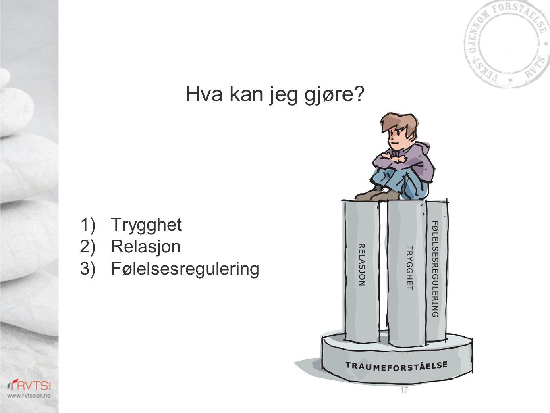 Hva kan jeg gjøre? 1)Trygghet 2)Relasjon 3)Følelsesregulering 17