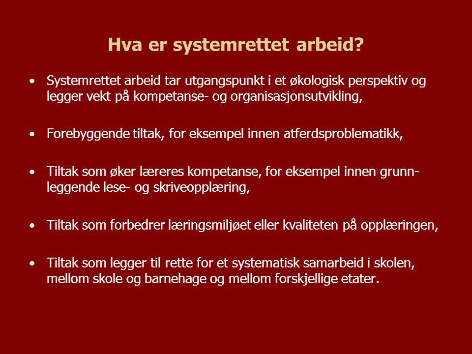 Hva er systemrettet arbeid? Systemrettet arbeid tar utgangspunkt i et økologisk perspektiv og legger vekt på kompetanse- og organisasjonsutvikling, Fo