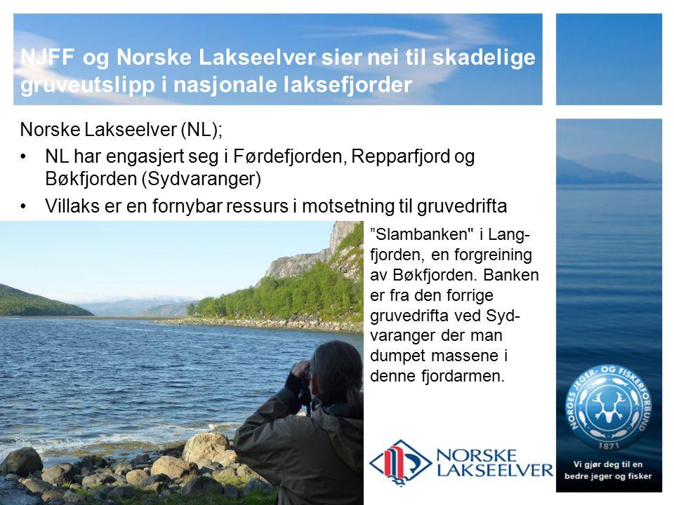 NJFF og Norske Lakseelver sier nei til skadelige gruveutslipp i nasjonale laksefjorder Norske Lakseelver (NL); NL har engasjert seg i Førdefjorden, Repparfjord og Bøkfjorden (Sydvaranger) Villaks er en fornybar ressurs i motsetning til gruvedrifta Slambanken i Lang- fjorden, en forgreining av Bøkfjorden.