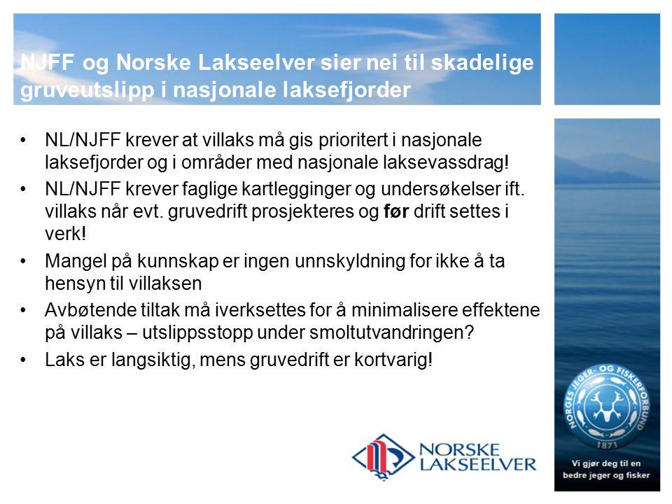 NJFF og Norske Lakseelver sier nei til skadelige gruveutslipp i nasjonale laksefjorder NL/NJFF krever at villaks må gis prioritert i nasjonale laksefjorder og i områder med nasjonale laksevassdrag.